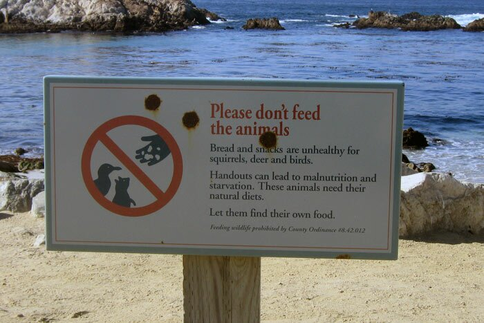 Табличка: Please don't feed the animals